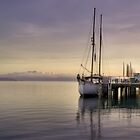 The Morning Clam, Port Douglas by Rob Brown