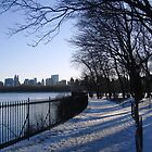 Central Park Winter by gunda96