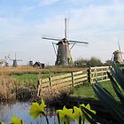 The Windmills of Kinderdijk by Patricia127