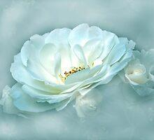 Beauty in the Mist by Dawn B Davies-McIninch