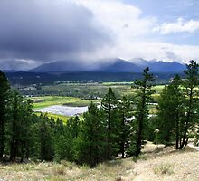 Kootenay Valley and Wetlands by George Cousins