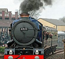 Steam Enthusiasts Delight! by Beverley Barrett