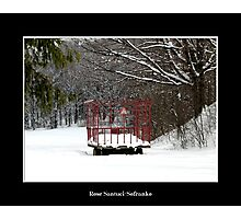 Hay Wagon in the snow Photographic Print