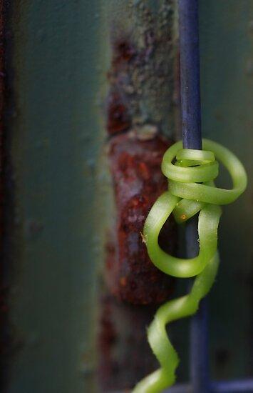 Hang On ~ For Viv by Renee Blake