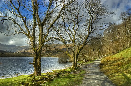Elterwater Footpath by Jamie  Green