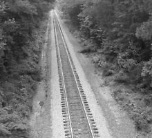 Train Track Monticello Florida by pamie38