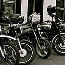 Old Bikes Never Die...... by Lou Wilson