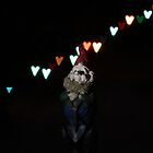 Gnome and heart shaped lights by Paul Budge