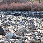 Low Boise River by Paul Budge