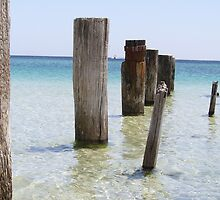 Old jetty Busselton WA by Michelle Newman