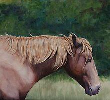 Assateague Island Wild Pony by Charlotte Yealey