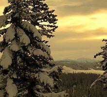 Warm skies above the North Fork by Breanna Stewart