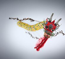 Chinese dragon flying higher by DAVIDPOLONOWSKI