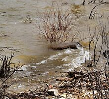 Winds that Move the Waters by Barb Miller