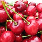 Cherries by Sue Ellen Thompson
