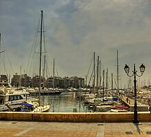 Zea Marina by Tom Gomez