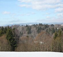 View from Eidsvoll, Norway by missmoneypenny