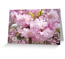 Tree Blossom Flowers Floral art prints Baslee Troutman Greeting Card