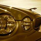 Jaguar S Type 1 by Lou Wilson