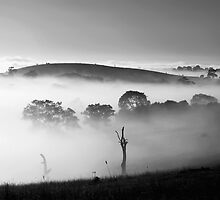 ~ Morning Magic ~ by LeeoPhotography