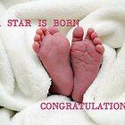 A  STAR  IS  BORN by Heidi Mooney-Hill