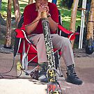 Didgeridoo by heatherfriedman