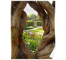 Peek at the Garden Poster