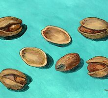 stash of pistachios by bernzweig