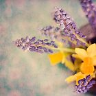 Grape Hyacinth and Daffodil by greenzinnia