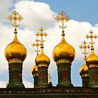 Golden Onions by Marzena Grabczynska Lorenc