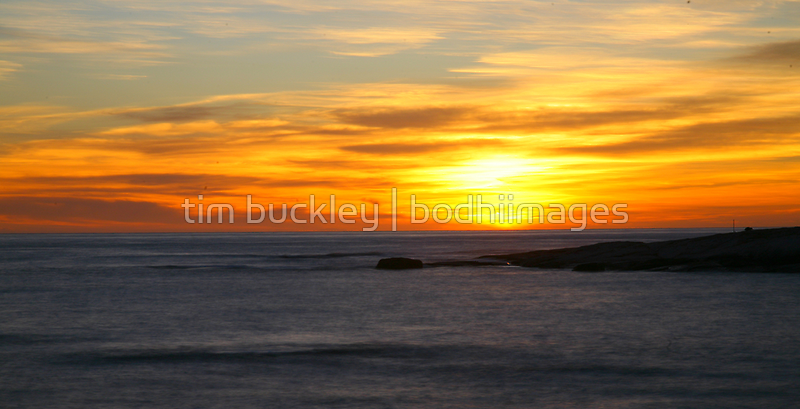 island. eastcoast, tasmania by tim buckley | bodhiimages