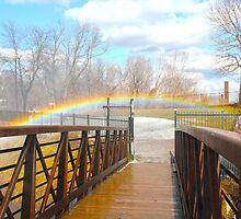 Over the rainbow by ZeeZeeshots