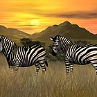 Sunset Zebras by Walter Colvin