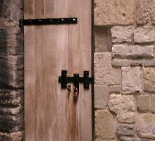 """Castle Doors #4"" by Kathryn Page"