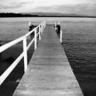 Boardwalk by Nemelu1