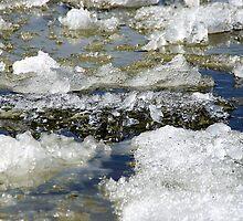 Ice run by Bluesrose