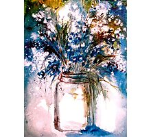 Blue and White... Photographic Print