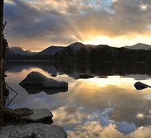 Last Rays by Jacqueline Wilkinson