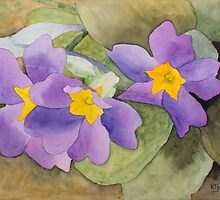 Forsyth Flowers by Ken Powers