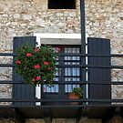 Door with flowers by Michele Filoscia