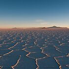 Salar Sunrise by Chid Gilovitz
