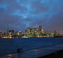 Toronto Skyline by Andrew English