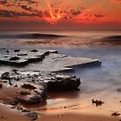 Turimetta Crowned  by Tatiana R