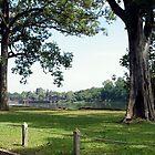 Cambodia. Angkor Wat , Siem Reap 61 by Feesbay