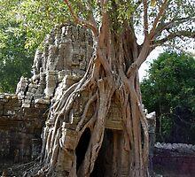 Cambodia. Angkor Wat , Siem Reap 68 by Feesbay