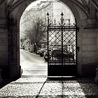 Gate by Delfino