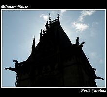 Biltmore House ~ Part Four by artisandelimage