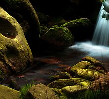 Secret Hallow by johnfinney