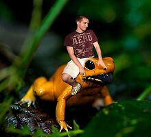 Look Out, The Poisonous Dart Frog Rodeo Is In Town by Miranda Rose