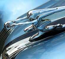Hood Ornament 446 by Brian Swartz